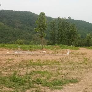 8100 Sq.ft Residential Plot for Sale in Kaulagarh, Dehradun