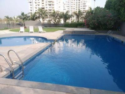 Swimming Pool Image of PG 5739453 Baner in Baner