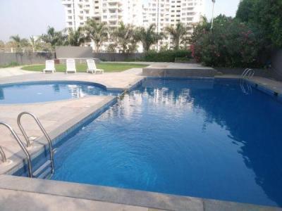 Swimming Pool Image of PG 5739453 Baner in Baner