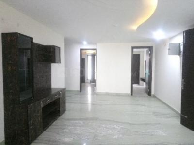 Gallery Cover Image of 2750 Sq.ft 3 BHK Independent Floor for rent in Sector 49 for 30000