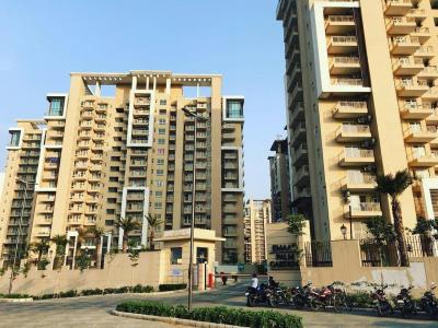Gallery Cover Image of 300 Sq.ft 1 RK Apartment for buy in Sector 83 for 6500000