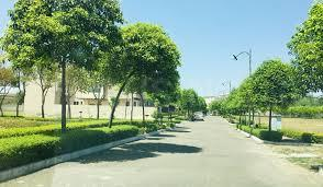 540 Sq.ft Residential Plot for Sale in Sector 88A, Gurgaon