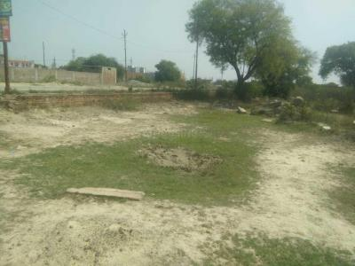 Gallery Cover Image of  Sq.ft Residential Plot for buy in Chakeri for 56000000