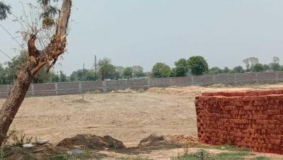 Gallery Cover Image of 900 Sq.ft Residential Plot for buy in sector 98 for 2750000