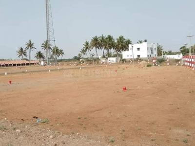 Gallery Cover Image of  Sq.ft Residential Plot for buy in Kalapatti for 810000