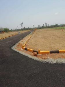 Gallery Cover Image of  Sq.ft Residential Plot for buy in Nellikuppam for 500000