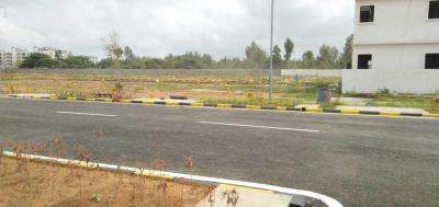 Gallery Cover Image of  Sq.ft Residential Plot for buy in Rayasandra for 5385214