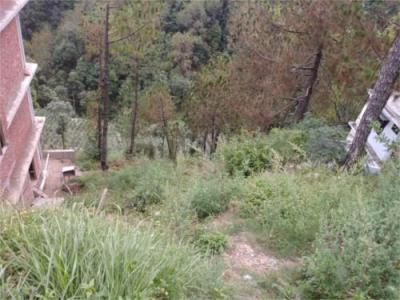 2613 Sq.ft Residential Plot for Sale in Deoghat, Solan