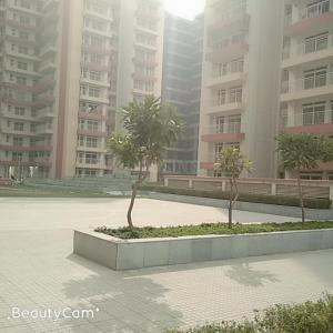 Gallery Cover Image of 1704 Sq.ft 3 BHK Apartment for rent in Sector 77 for 11000
