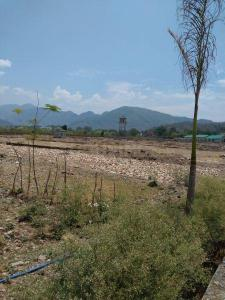 Gallery Cover Image of  Sq.ft Residential Plot for buy in Chironwali for 5400000