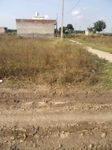 150 Sq.ft Residential Plot for Sale in Samrala, Ludhiana