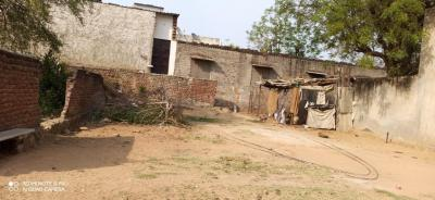 450 Sq.ft Residential Plot for Sale in Durgapura, Jaipur