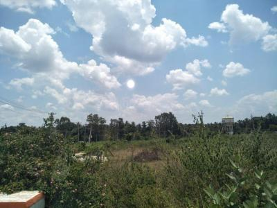 Gallery Cover Image of  Sq.ft Residential Plot for buy in Kammanahalli for 21000000