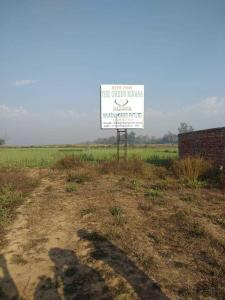 1250 Sq.ft Residential Plot for Sale in Phulwari Sharif, Patna