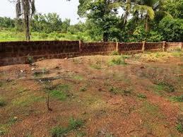 8148 Sq.ft Residential Plot for Sale in Quepem, Goa