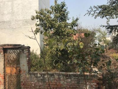 680 Sq.ft Residential Plot for Sale in Jharoda Kalan, New Delhi