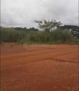Gallery Cover Image of 450 Sq.ft Residential Plot for buy in Uran for 600000