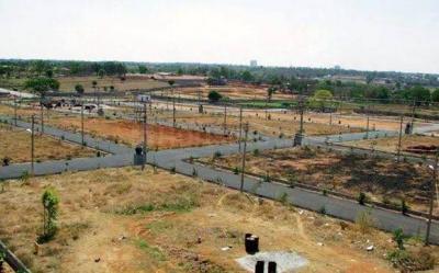 900 Sq.ft Residential Plot for Sale in Sector 17 Dwarka, New Delhi