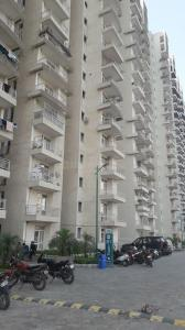 Gallery Cover Image of 1267 Sq.ft 3 BHK Apartment for rent in Noida Extension for 8000