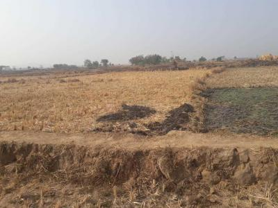 Gallery Cover Image of  Sq.ft Residential Plot for buy in Dronagiri for 600000