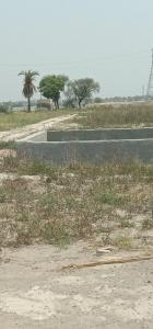 Gallery Cover Image of  Sq.ft Residential Plot for buy in Bhopani for 125000