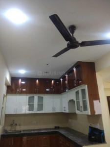 Gallery Cover Image of 1350 Sq.ft 2 BHK Apartment for rent in Noida Extension for 10000
