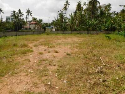 Gallery Cover Image of  Sq.ft Residential Plot for buy in Pettah for 1000000