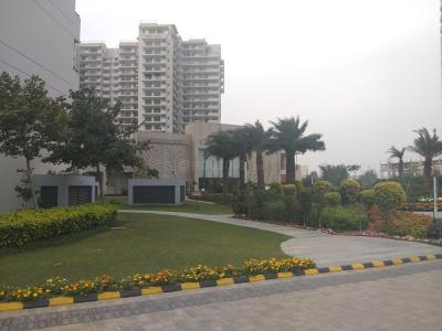 Gallery Cover Image of 2660 Sq.ft 3 BHK Apartment for rent in Sector 81 for 30000