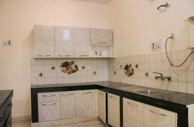 Kitchen Image of Girls PG in Indira Nagar