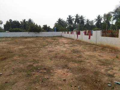Gallery Cover Image of  Sq.ft Residential Plot for buy in Padapai for 850000