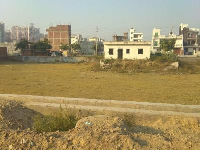 Gallery Cover Image of 450 Sq.ft Residential Plot for buy in Sector 143B for 525000