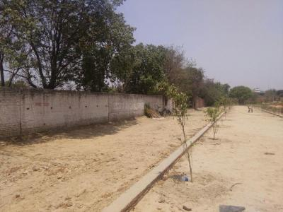 Gallery Cover Image of  Sq.ft Residential Plot for buy in Shastri Nagar for 8000000