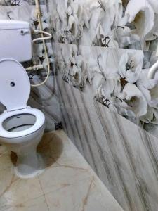 Common Bathroom Image of Girls PG in Dum Dum