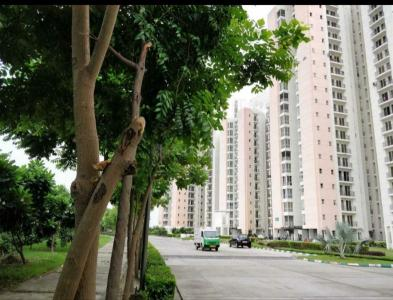 Gallery Cover Image of 950 Sq.ft 2 BHK Apartment for rent in Sector 151 for 9000