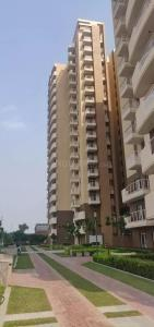 Gallery Cover Image of 1457 Sq.ft 2 BHK Apartment for rent in Eldeco Accolade, Sector 2, sohna for 18000