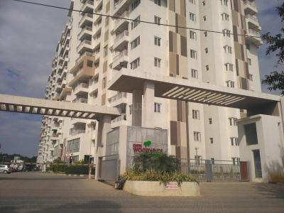 Gallery Cover Image of 1575 Sq.ft 3 BHK Apartment for rent in DSR Woodwinds, Kaikondrahalli for 37000