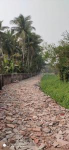 2160 Sq.ft Residential Plot for Sale in Thakurpukur, Kolkata