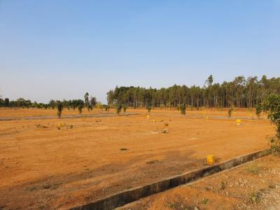 Gallery Cover Image of 1500 Sq.ft Residential Plot for buy in Whitefield for 2500000