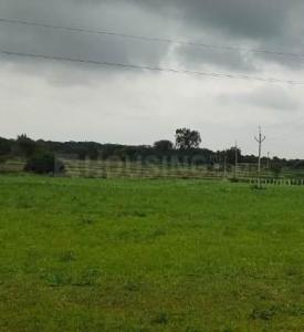 Gallery Cover Image of  Sq.ft Residential Plot for buy in Mansanpally for 4000000