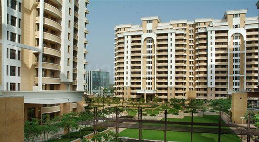 Building Image of 2350 Sq.ft 3 BHK Apartment for rent in Sector 53 for 55000