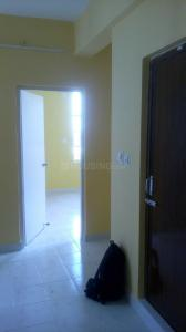 Gallery Cover Image of 685 Sq.ft 2 BHK Apartment for rent in Kamalgazi for 20000