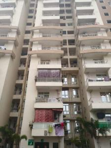 Gallery Cover Image of 1074 Sq.ft 2 BHK Apartment for rent in Paramount Emotions, Phase 2 for 5500