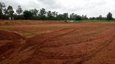 Gallery Cover Image of  Sq.ft Residential Plot for buy in Navarathna Agrahara for 6598000