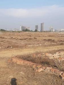 Gallery Cover Image of  Sq.ft Residential Plot for buy in Sangam Vihar for 175000