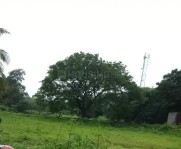 13068 Sq.ft Residential Plot for Sale in Ambivli, Thane