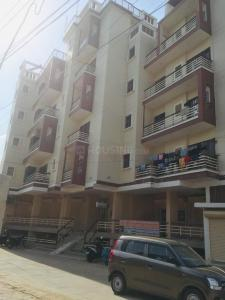 Gallery Cover Image of 750 Sq.ft 2 BHK Apartment for rent in Sai Vihar, Ghitorni for 11500