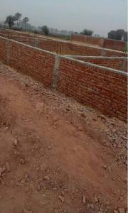 Gallery Cover Image of 900 Sq.ft Residential Plot for buy in Sector 105 for 750000