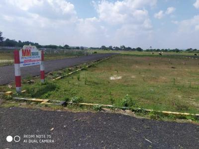 Gallery Cover Image of 1000 Sq.ft Residential Plot for buy in Chengalpattu for 1400000