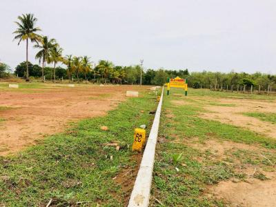 Gallery Cover Image of  Sq.ft Residential Plot for buy in Thirunindravur for 529200