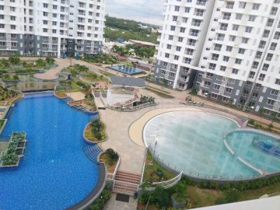 Gallery Cover Image of 1640 Sq.ft 2 BHK Apartment for rent in Purva Palm Beach, Kyalasanahalli for 28000
